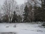 allee sous neige.JPG